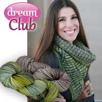 Dream In Color Canyon - Dream Club December 2015 (2 skeins)