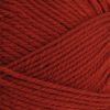 Brown Sheep Nature Spun Worsted - 101W Burnt Sienna